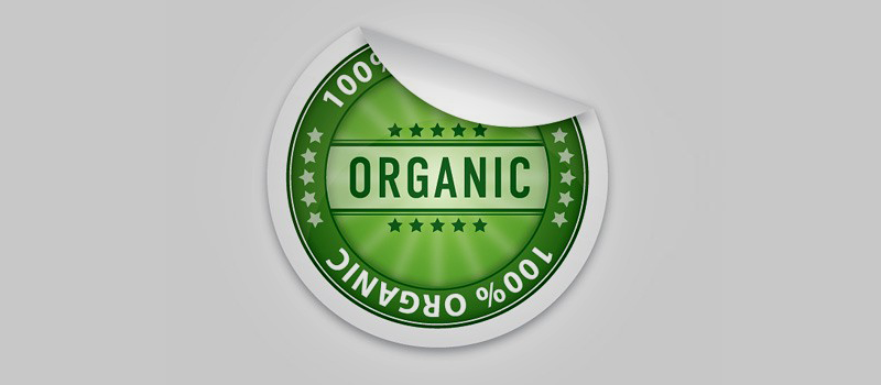 Organic Traffic Sources for Niche Website Promotion