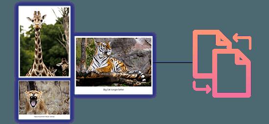 Why Choose WP Portfolio Plugin for WordPress?