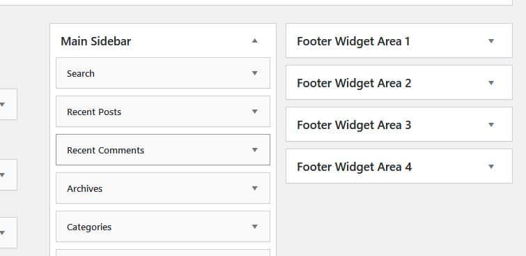 Footer Widget Options